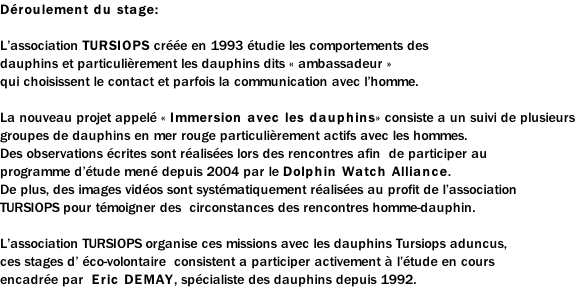 photos et videos de dauphins